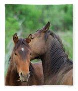Grooming Horses Fleece Blanket