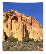 Groscenor Double Arch Panorama Fleece Blanket