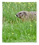 Groundhog In A Field Of Flowers Fleece Blanket