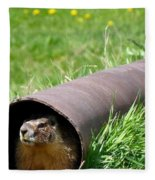 Groundhog In A Pipe Fleece Blanket