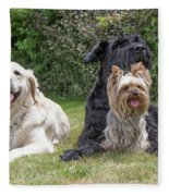 Group Of Three Dogs Fleece Blanket