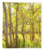 Grove Of Aspens On An Autumn Day Fleece Blanket