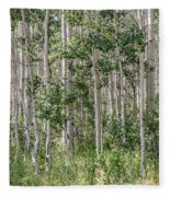 Grove Of Quaking Aspen Aka Quakies Fleece Blanket