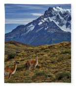 Guanacos In Patagonia Fleece Blanket
