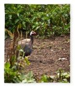 Guinea Fowl 1 Fleece Blanket