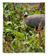 Guineafowl 3 Fleece Blanket