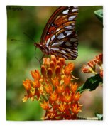 Gulf Fritillary On Butterflyweed Fleece Blanket