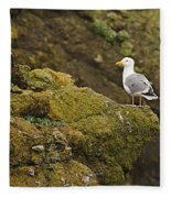 Gull On Cliff Edge Fleece Blanket
