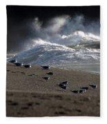 Gulls At Goat Rock Sundown Fleece Blanket