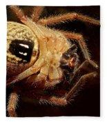 Hairy Spider Fleece Blanket