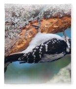 Hairy Woodpecker 2 Fleece Blanket