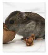 Hamster Eating A Walnut  Fleece Blanket