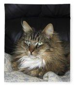 Handsome Cat Fleece Blanket