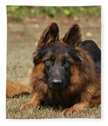Handsome Fella Fleece Blanket