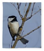 Hanging Out Fleece Blanket