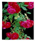 Hanging Roses 2593 Fleece Blanket
