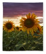 Happiness Is A Field Of Sunflowers Fleece Blanket