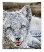 Happy Arctic Fox Fleece Blanket