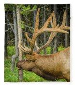 Happy Elk Fleece Blanket