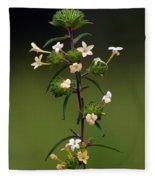 Happy Flowers Fleece Blanket