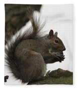 Happy Squirrel Fleece Blanket