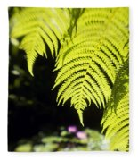 Hapuu Ferns Fleece Blanket