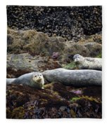 Harbor Seals Basking - Oregon Coast Fleece Blanket