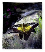 Hard Landing--clipper Butterfly Fleece Blanket