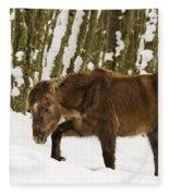 Hardships Of Winter Fleece Blanket