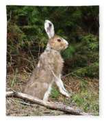 Hare That Fleece Blanket
