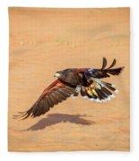 Harris Hawk Fleece Blanket