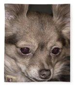 Hattie--foxy Chihuahua Fleece Blanket