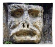 Haunted Stone Heads Fleece Blanket