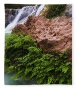 Havasu Creek Grand Canyon 3 Fleece Blanket