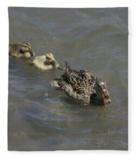 Having Your Duckies In A Row  Fleece Blanket