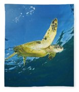 Hawaii, Green Sea Turtle Fleece Blanket