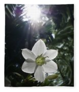 Hawaiian Flower Fleece Blanket