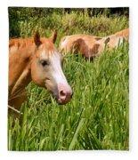 Hawaiian Horses In Sugar Cane Fleece Blanket