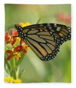 Hawaiian Monarch 1 Fleece Blanket