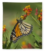 Hawaiian Monarch 2 Fleece Blanket