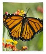 Hawaiian Monarch 3 Fleece Blanket