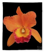 Potinara Hawaiian Thrill, Paradise Fleece Blanket