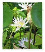 Hawiian Water Lily 01 - Kauai, Hawaii Fleece Blanket