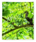 Hawk In Sycamore Fleece Blanket