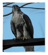 Hawk Urban Hunting Fleece Blanket