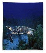 Hawksbill Sea Turtle 1 Fleece Blanket