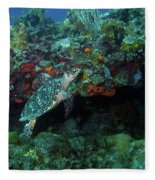 Hawksbill Sea Turtle 4 Fleece Blanket