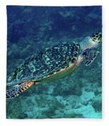 Hawksbill Sea Turtle 5 Fleece Blanket