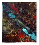 Hawksbill Sea Turtle 9 Fleece Blanket