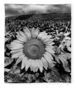 Hdr Sunflower Field. Fleece Blanket